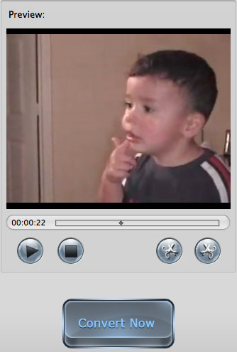 Import MTS into iMovie
