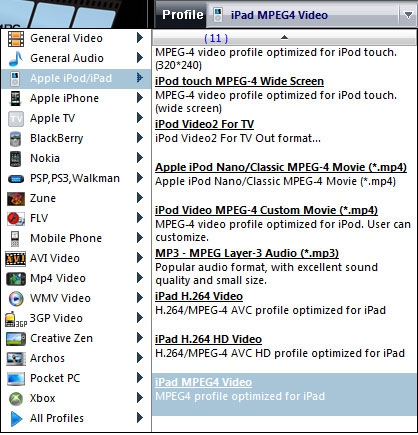 convert mts to ipad